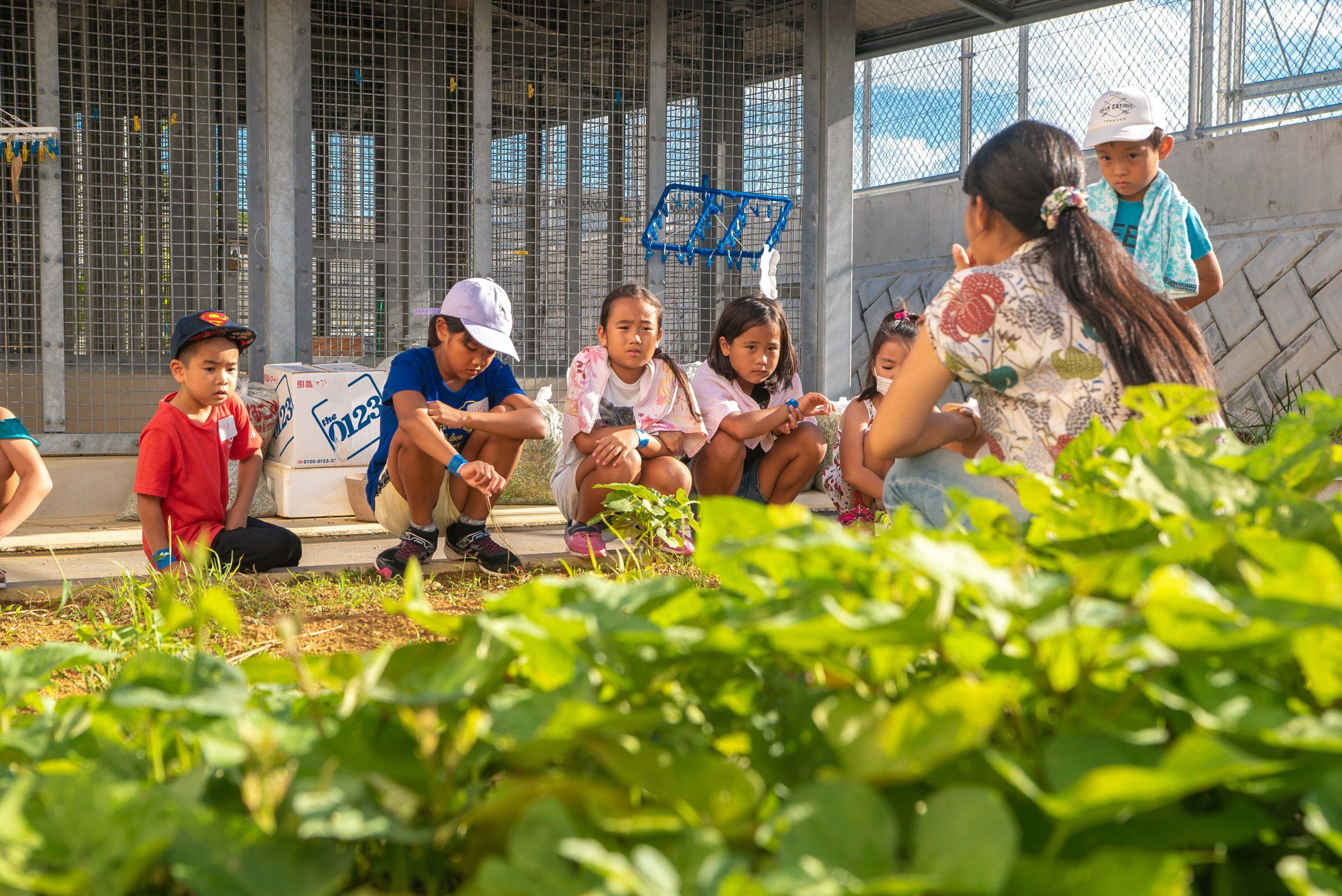 沖縄での子供達への講義の様子